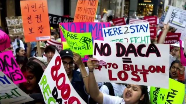 DACA Protestors
