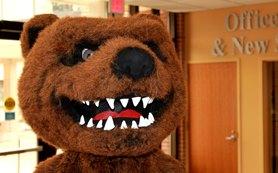 """Part one of """"Ranger Bear or StrangerBear"""""""