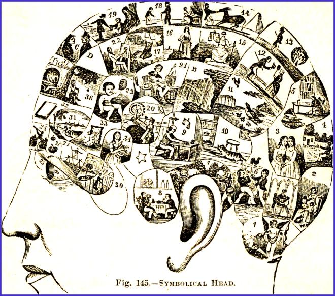 Human_mind,_Human_Universals.png